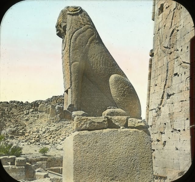 egypte-vintage-ancien-vieille-photo-pyramide-05