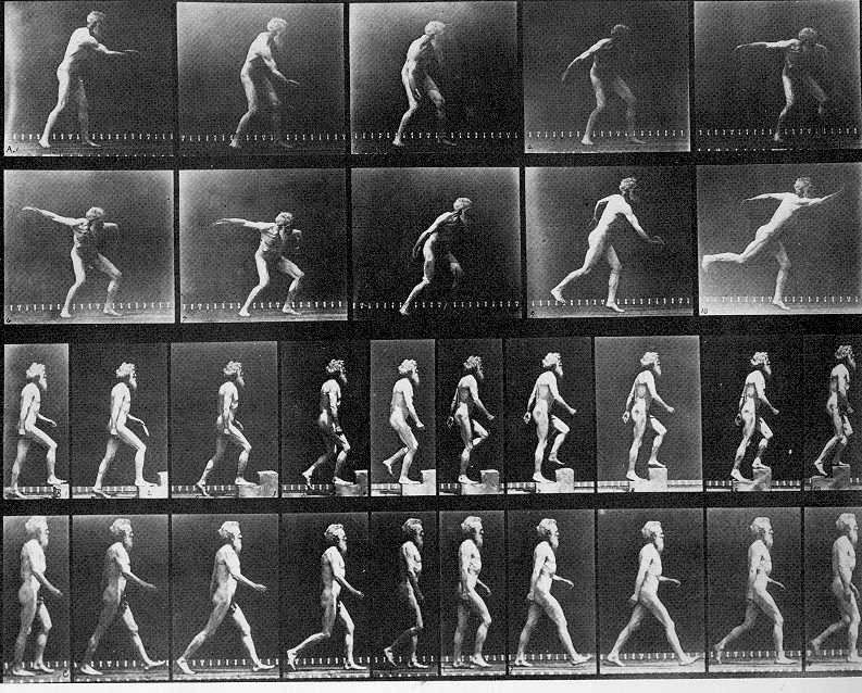 Muybridge Autoportraits de photographes