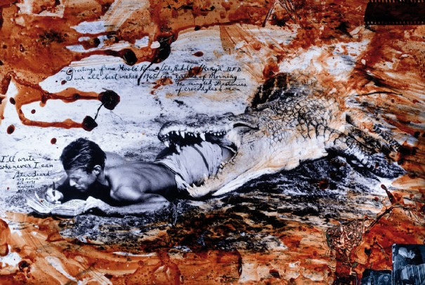 peter beard Autoportraits de photographes