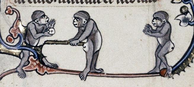 Du baseball avec des singes.