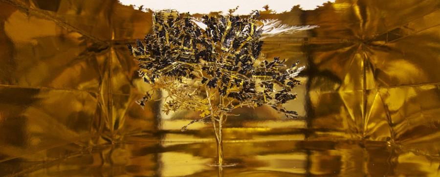 arbre-sac-04