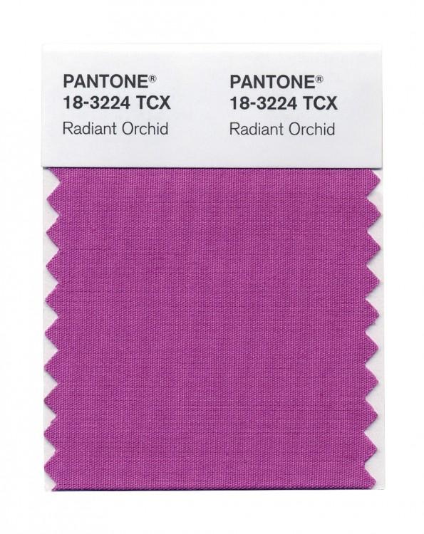 radiant-ochid-couleur-pantone-2014-01