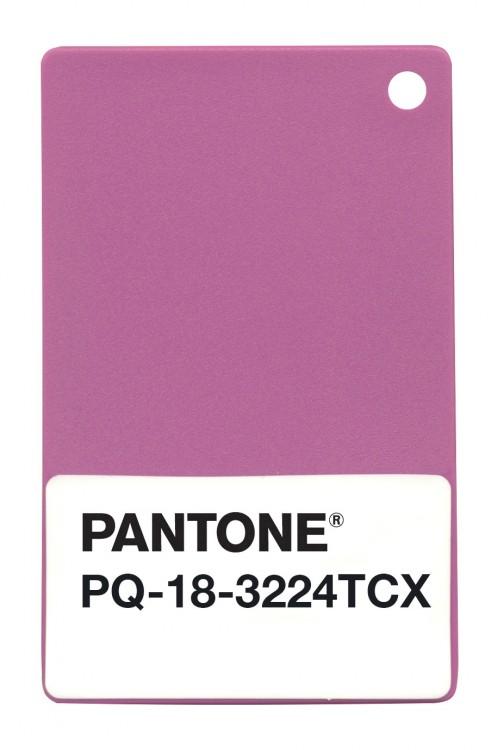 radiant-ochid-couleur-pantone-2014-06