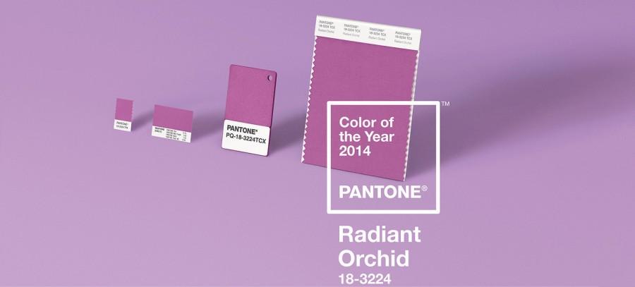 radiant-ochid-couleur-pantone-2014-07