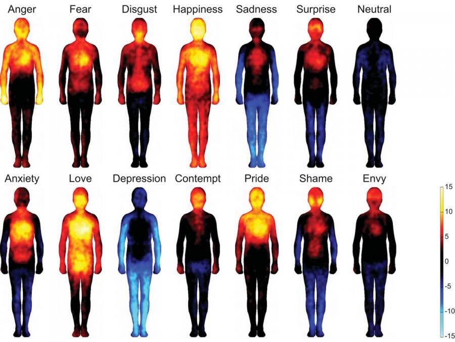 emotion 900x678 Où nous ressentons nos émotions dans notre corps  technologie information divers