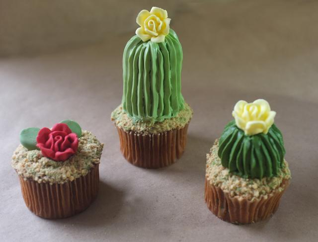 cactus-gateau-03